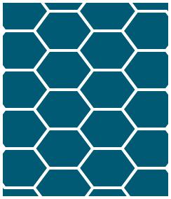 亀甲型マスイメージ